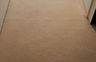 PLATINUM SERVICE – Scrub & Steam Carpet Cleaning (B)
