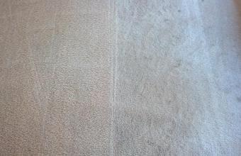 DELUXE SERVICE – Carpet Steam Cleaning