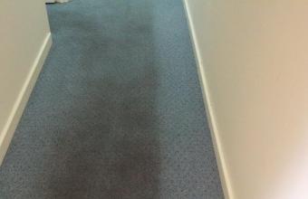 PLATINUM SERVICE – Scrub & Steam Carpet Cleaning