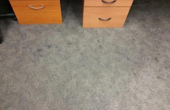 STANDARD SERVICE – Low Moisture Carpet Cleaning (A)