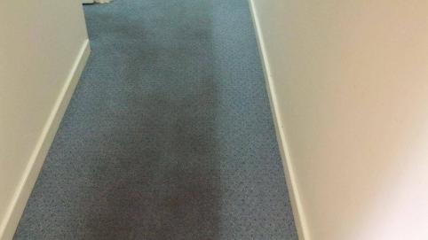 Office Carpet Cleaning Services In Cottesloe