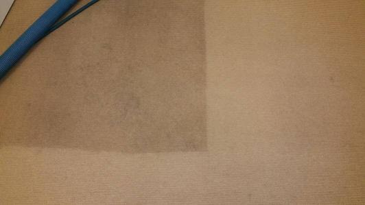 Perth Carpet Cleaning 6