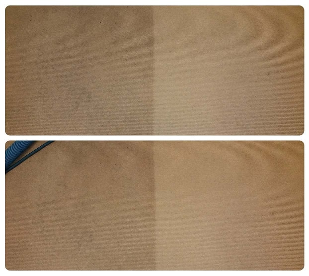 Professional carpet stain removal service in Perth.